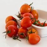 Predchádzajte nákazám paradajok od začiatku