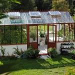 Čo pestovať v skleníku