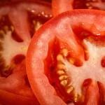 Keříčková, tyčková a polokeříčková rajčata