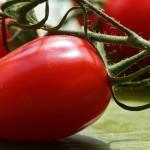 Ako nechať dozrieť zelené paradajky ?