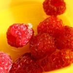 Ako rozmnožovať drobné ovocie