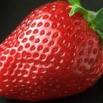 Ako pestovať jahody