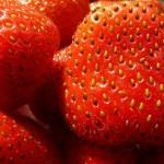 Vyskúšajte jahody zo semien