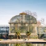 Ako vybrať skleník na záhradu?