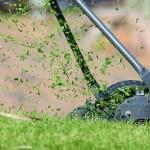 Pozrite sa, ako pripraviť trávnik na novú sezónu. Máme 6 rád, ako na to